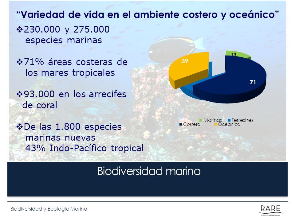 Biodiversidad y Ecología Marina Variedad de vida en el ambiente costero y oceánico Biodiversidad marina 230.000 y 275.000 especies marinas 71% áreas c