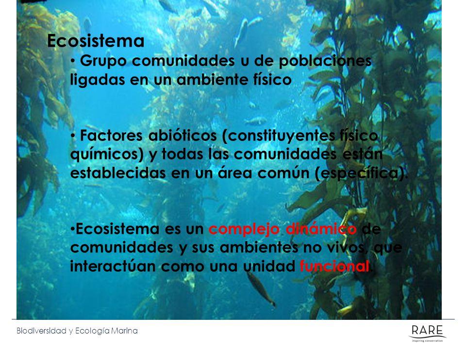 Biodiversidad y Ecología Marina Ecosistema Grupo comunidades u de poblaciones ligadas en un ambiente físico Factores abióticos (constituyentes físico