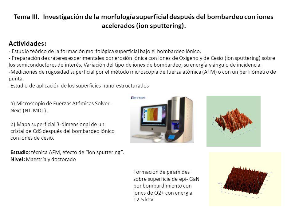Tema III. Investigación de la morfología superficial después del bombardeo con iones acelerados (ion sputtering). Actividades: - Estudio teórico de la