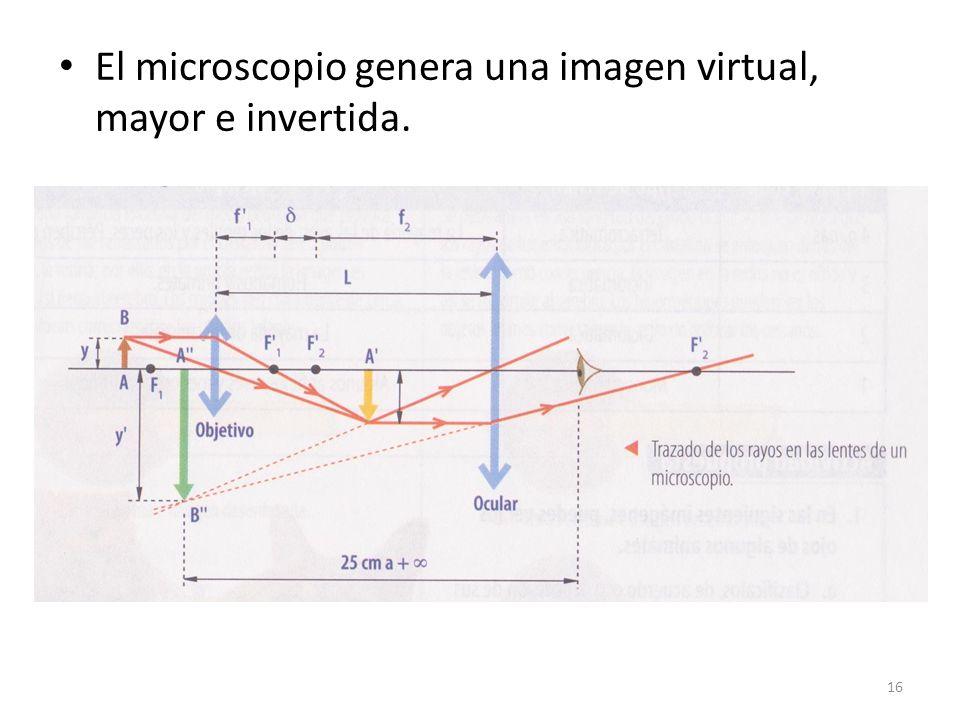 El microscopio genera una imagen virtual, mayor e invertida. 16
