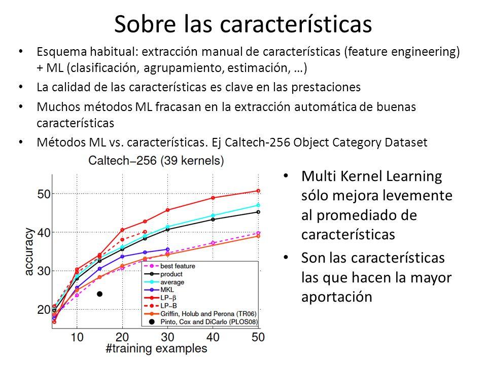 Sobre las características Esquema habitual: extracción manual de características (feature engineering) + ML (clasificación, agrupamiento, estimación,