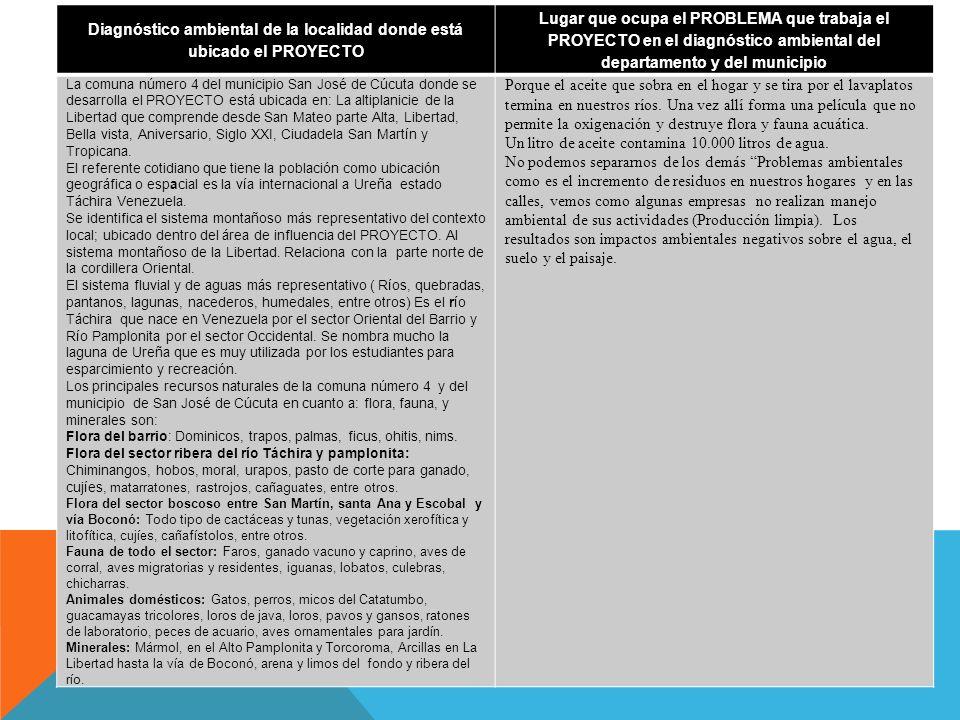 Áreas del plan de estudios involucradas en el PROYECTO ( artículo 23 ley 115.) Actividades extra plan de estudios desarrolladas específicamente para el PROYECTO (foro, debate, seminario, etc..) Al interior de la I.EAl exterior de la I.E Ciencias Naturales y Educación Ambiental Seminario, feria del reciclaje, proyectos sostenibles Proyección de estrategias de ahorro de energía a los hogares Humanidades Lengua Castellana Talleres, creación literaria, guiones de teatro, encuestas, exposiciones Presentaciones varias Educación Artística Montaje de la obra de teatro, elaboración de afiches, logos, entre otros Exposiciones en ferias Tecnología e Informática Elaboración de folletos o plegables, montaje de videos y presentaciones en power point, Feria de la energía, semana de la ciencia y tecnología Estadística Tabulación de los resultados de las encuestas Ética y Valores Debates sobre el valor de la responsabilidad ambiental, mantenimiento de las normas de la legalidad.