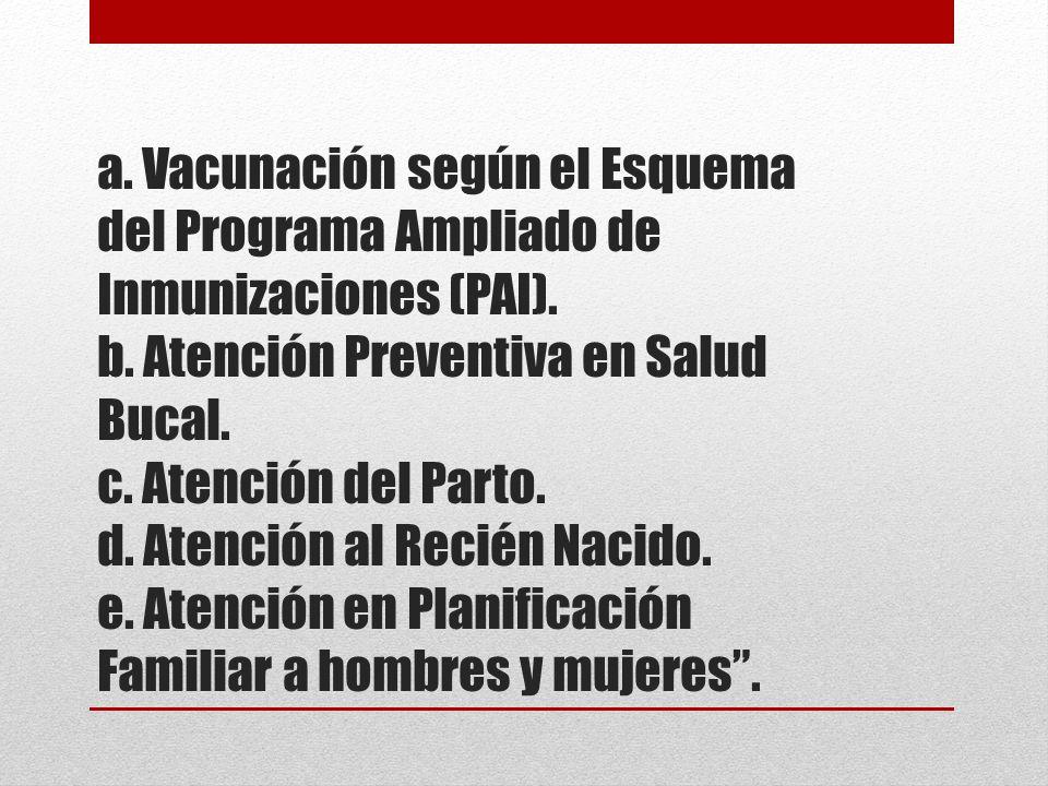 a. Vacunación según el Esquema del Programa Ampliado de Inmunizaciones (PAI). b. Atención Preventiva en Salud Bucal. c. Atención del Parto. d. Atenció