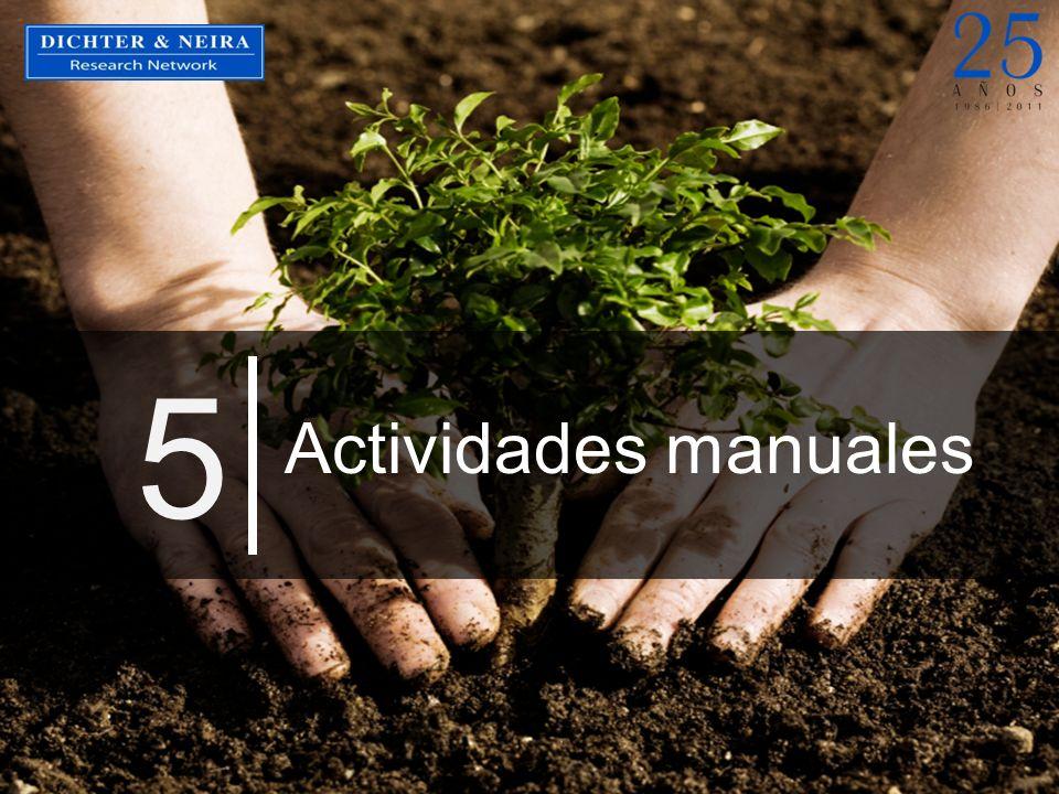 Actividades manuales 5