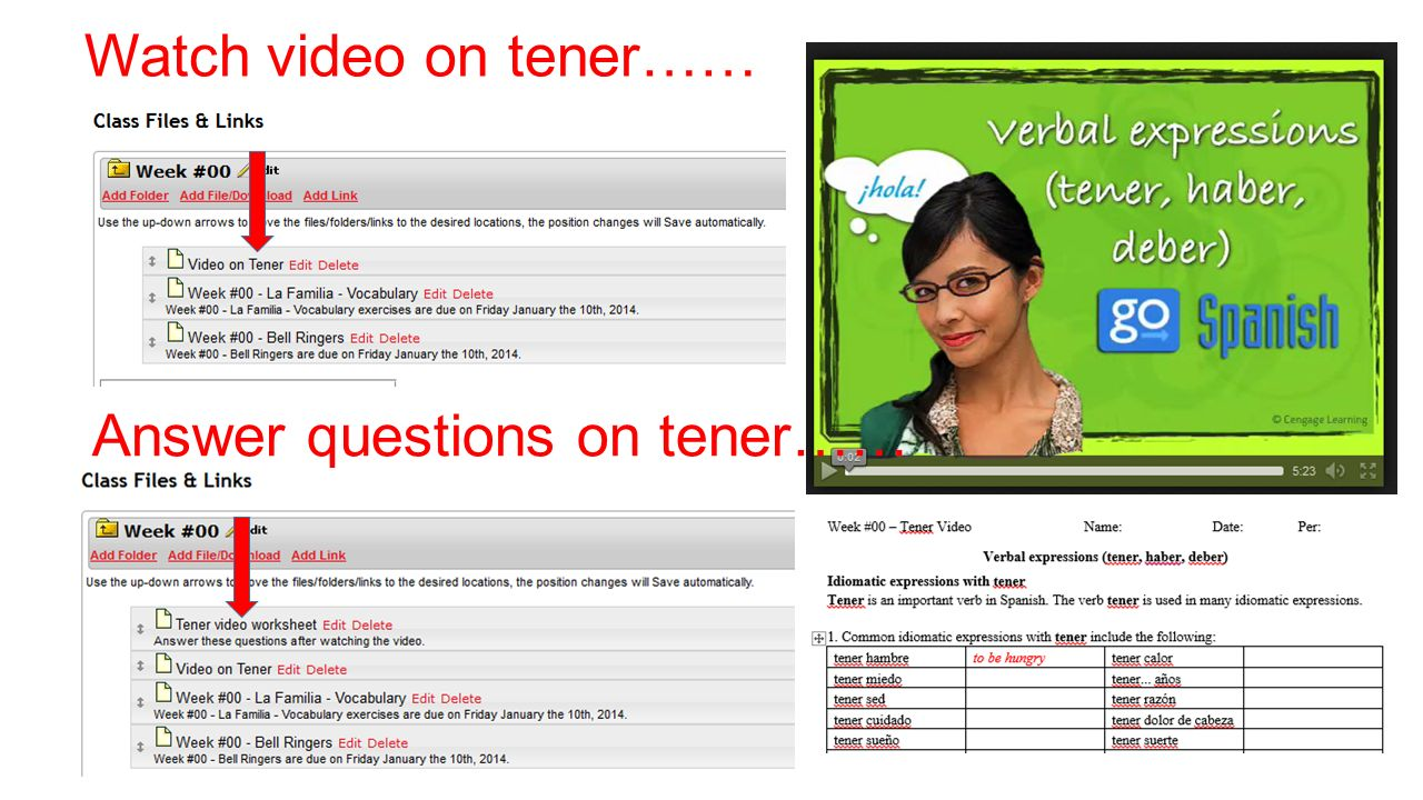 Watch video on tener…… Answer questions on tener……