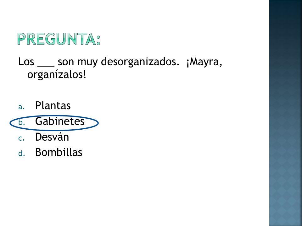 Los ___ son muy desorganizados. ¡Mayra, organízalos! a. Plantas b. Gabinetes c. Desván d. Bombillas