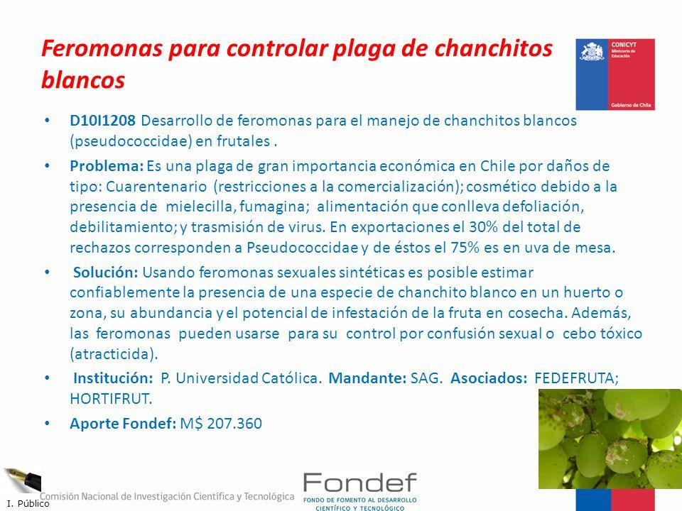 Feromonas para controlar plaga de chanchitos blancos D10I1208 Desarrollo de feromonas para el manejo de chanchitos blancos (pseudococcidae) en frutale
