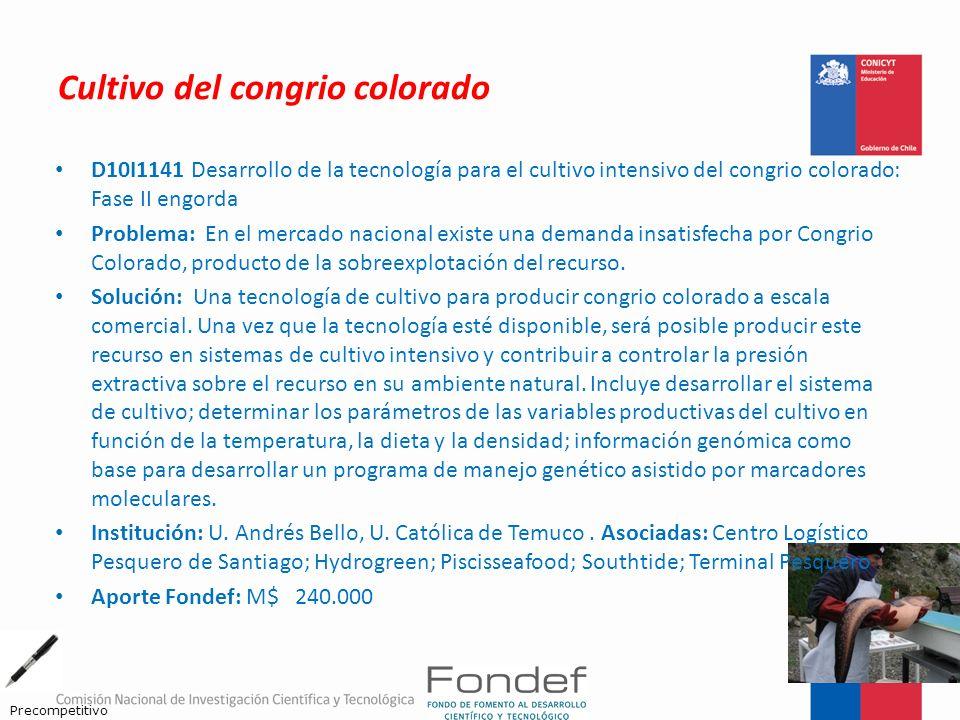 Cultivo del congrio colorado D10I1141 Desarrollo de la tecnología para el cultivo intensivo del congrio colorado: Fase II engorda Problema: En el merc