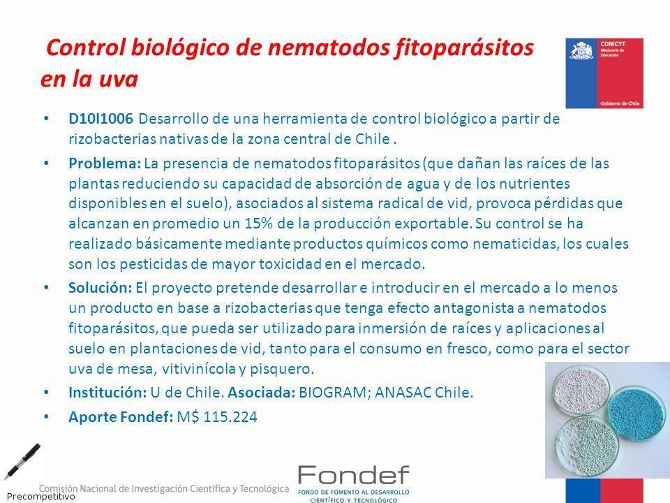 Control biológico de nematodos fitoparásitos en la uva D10I1006 Desarrollo de una herramienta de control biológico a partir de rizobacterias nativas d