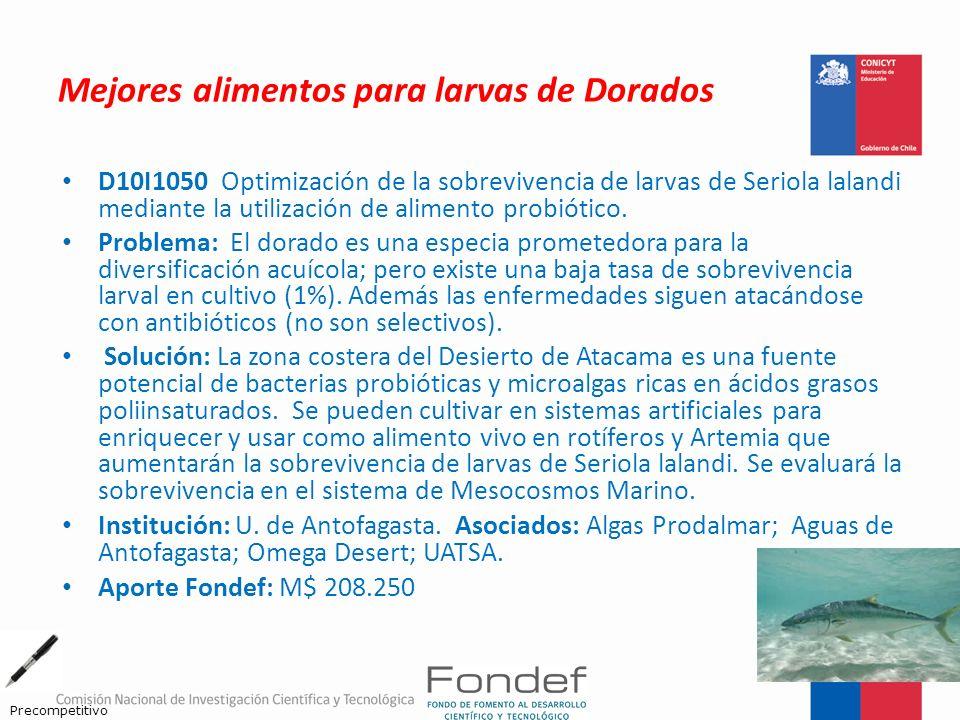 Mejores alimentos para larvas de Dorados D10I1050 Optimización de la sobrevivencia de larvas de Seriola lalandi mediante la utilización de alimento pr