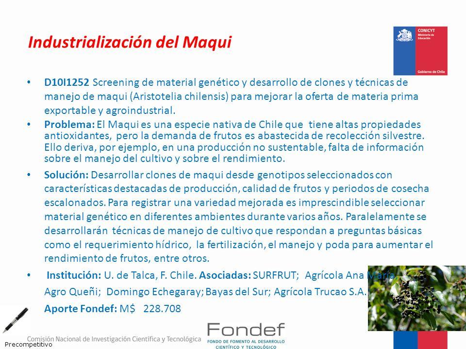 Industrialización del Maqui D10I1252 Screening de material genético y desarrollo de clones y técnicas de manejo de maqui (Aristotelia chilensis) para
