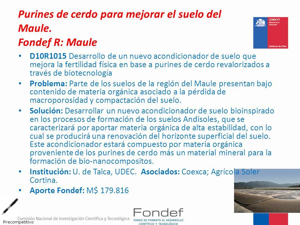 Purines de cerdo para mejorar el suelo del Maule. Fondef R: Maule D10R1015 Desarrollo de un nuevo acondicionador de suelo que mejora la fertilidad fís
