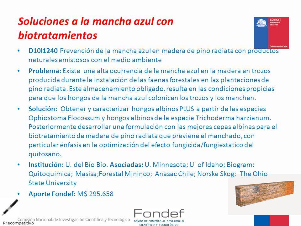 Soluciones a la mancha azul con biotratamientos D10I1240 Prevención de la mancha azul en madera de pino radiata con productos naturales amistosos con