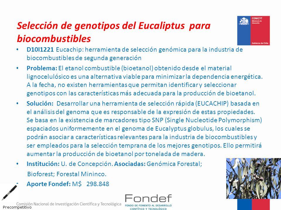 Selección de genotipos del Eucaliptus para biocombustibles D10I1221 Eucachip: herramienta de selección genómica para la industria de biocombustibles d