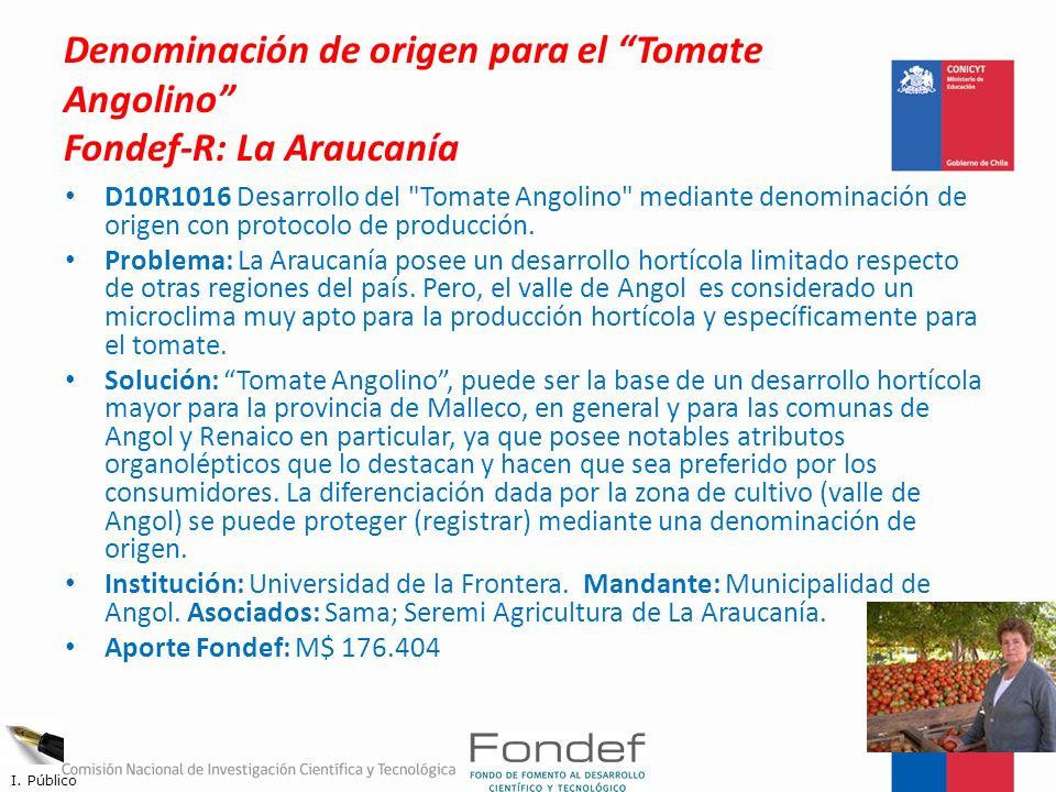 Denominación de origen para el Tomate Angolino Fondef-R: La Araucanía D10R1016 Desarrollo del