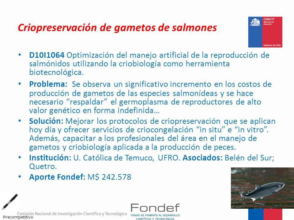 Criopreservación de gametos de salmones D10I1064 Optimización del manejo artificial de la reproducción de salmónidos utilizando la criobiología como h