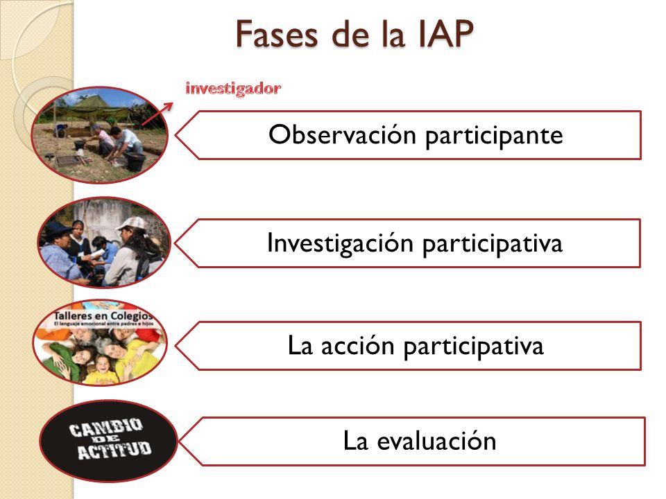 Fases de la IAP Observación participante Investigación participativa La acción participativa La evaluación