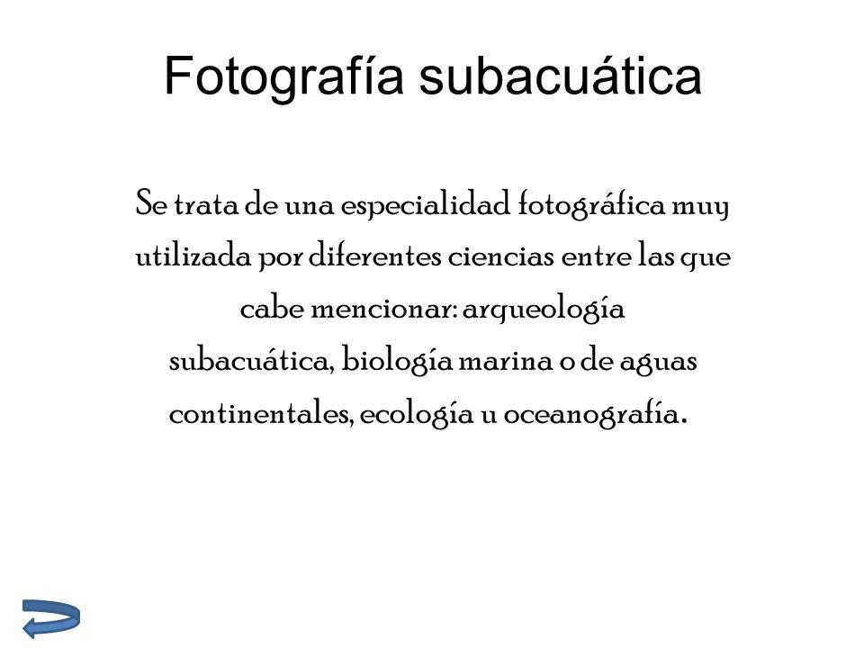 Fotografía subacuática Se trata de una especialidad fotográfica muy utilizada por diferentes ciencias entre las que cabe mencionar: arqueología subacuática, biología marina o de aguas continentales, ecología u oceanografía.