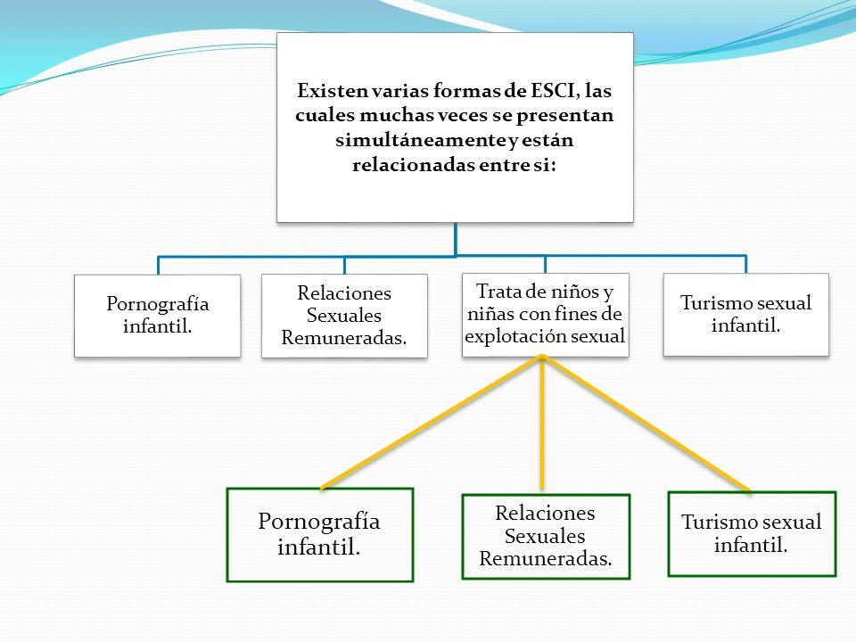 Existen varias formas de ESCI, las cuales muchas veces se presentan simultáneamente y están relacionadas entre si: Pornografía infantil. Relaciones Se