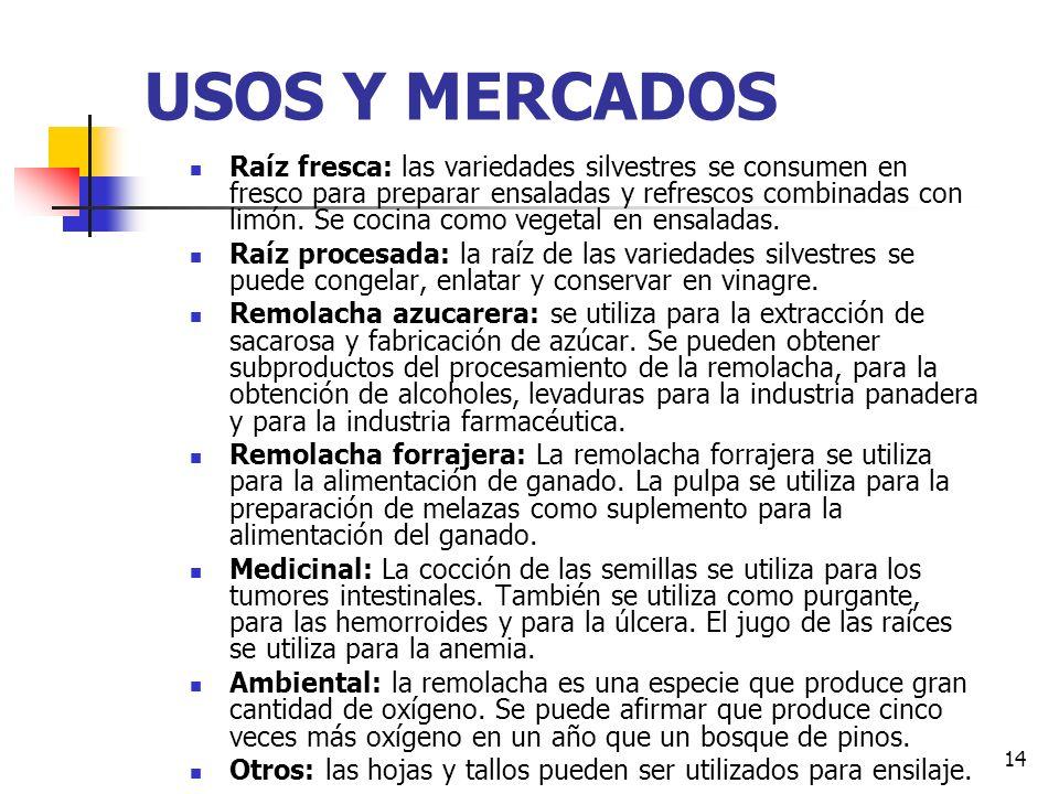 13 Composición Nutricional: 100 gramos de parte comestible de la raíz azucarera contienen: COMPUESTO Remolacha de huerta Remolacha azucarera Calorías