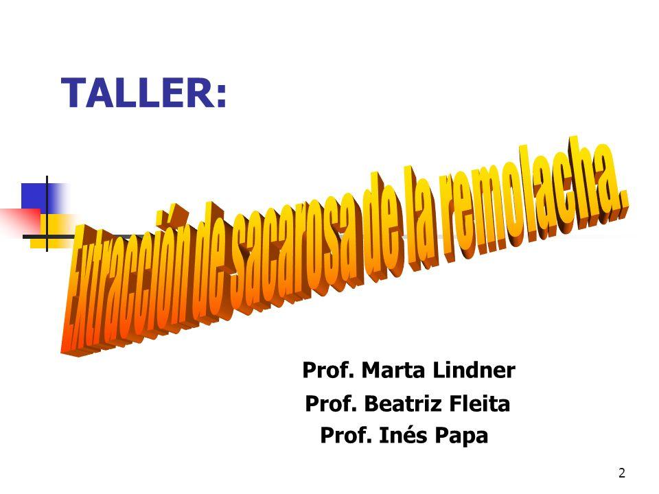 2 TALLER: Prof. Marta Lindner Prof. Beatriz Fleita Prof. Inés Papa