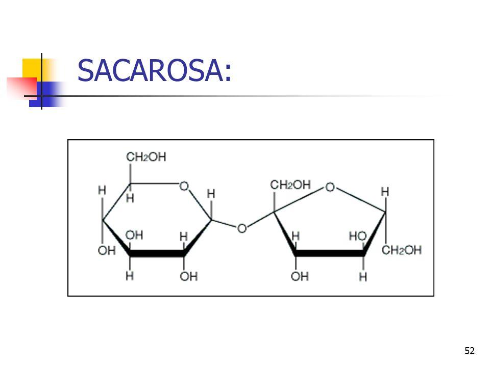 51 SUCRALOSA 1,6-dicloro-1,6-dideoxi-ß-D-fructofuranosil-4-cloro-4-deoxi-α -D-galactopiranósido 4,1',6'-triclorogalactosacarosa