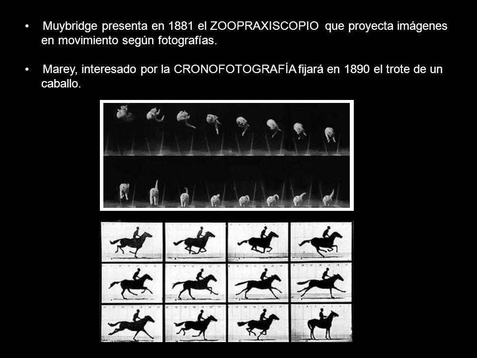 Muybridge presenta en 1881 el ZOOPRAXISCOPIO que proyecta imágenes en movimiento según fotografías. Marey, interesado por la CRONOFOTOGRAFÍA fijará en