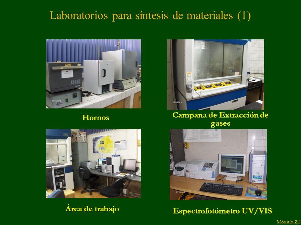 Hornos Campana de Extracción de gases Espectrofotómetro UV/VIS Área de trabajo Laboratorios para síntesis de materiales (1) Módulo Z1