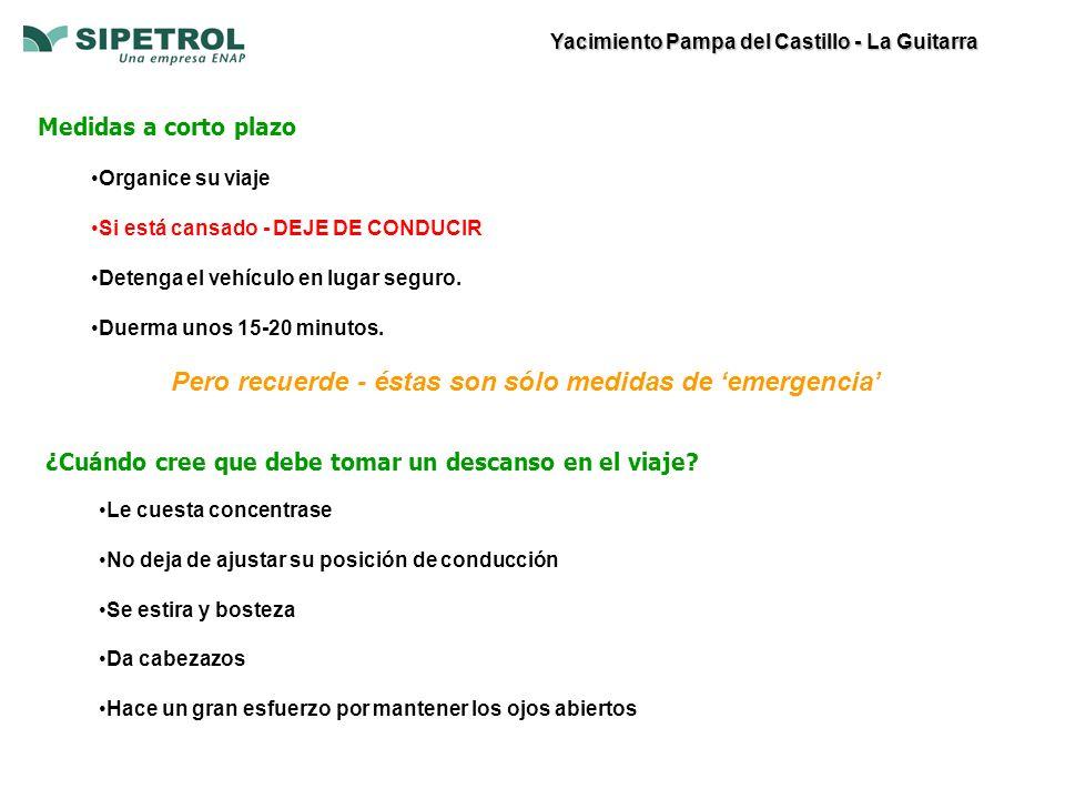 Yacimiento Pampa del Castillo - La Guitarra Medidas a corto plazo Organice su viaje Si está cansado - DEJE DE CONDUCIR Detenga el vehículo en lugar seguro.