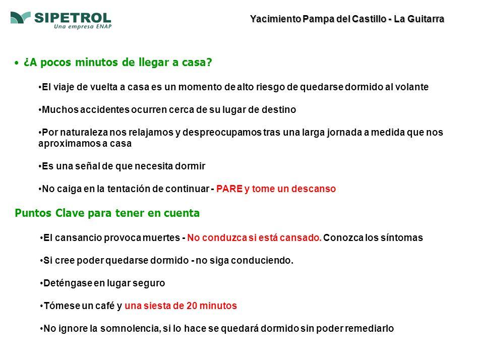 Yacimiento Pampa del Castillo - La Guitarra ¿A pocos minutos de llegar a casa.
