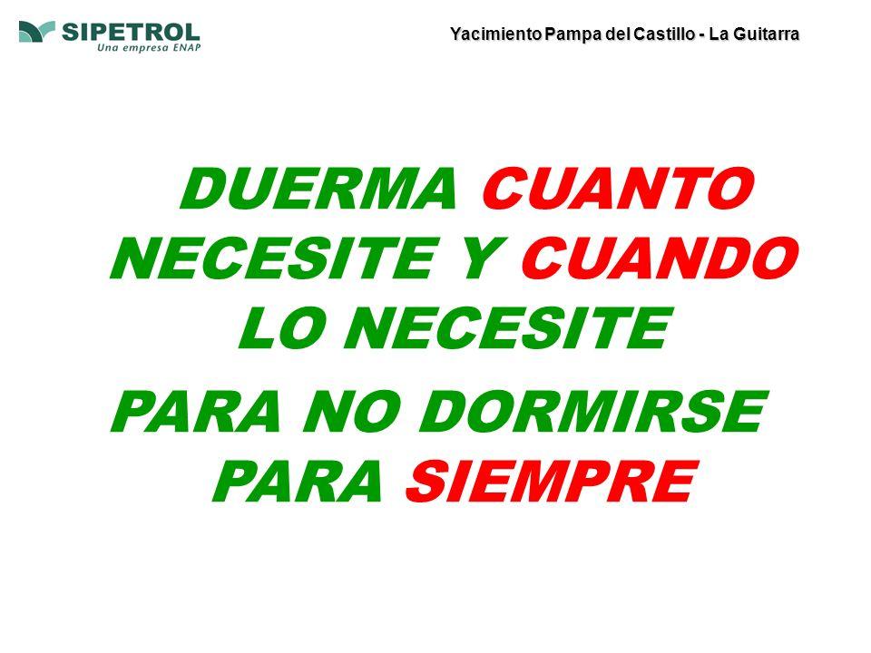 Yacimiento Pampa del Castillo - La Guitarra DUERMA CUANTO NECESITE Y CUANDO LO NECESITE PARA NO DORMIRSE PARA SIEMPRE