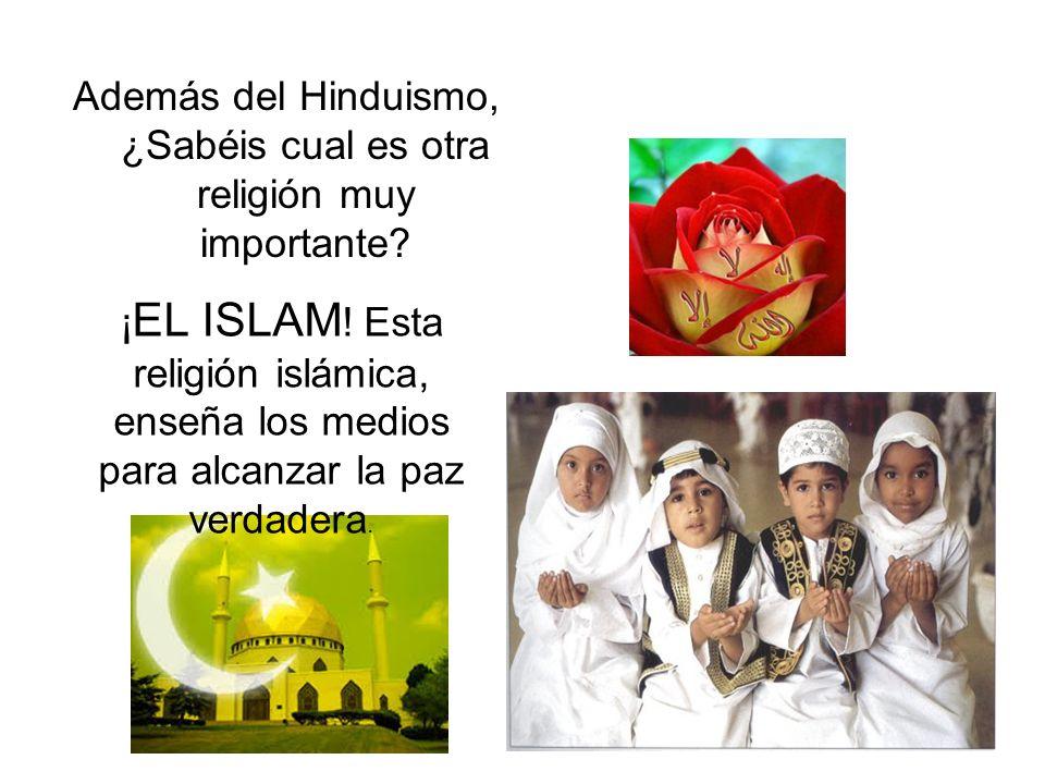 EL HINDUISMO El Hinduismo, es una de las religiones conocidas, más antiguas. Es también una de las más diversas y complejas, teniendo millones de dios