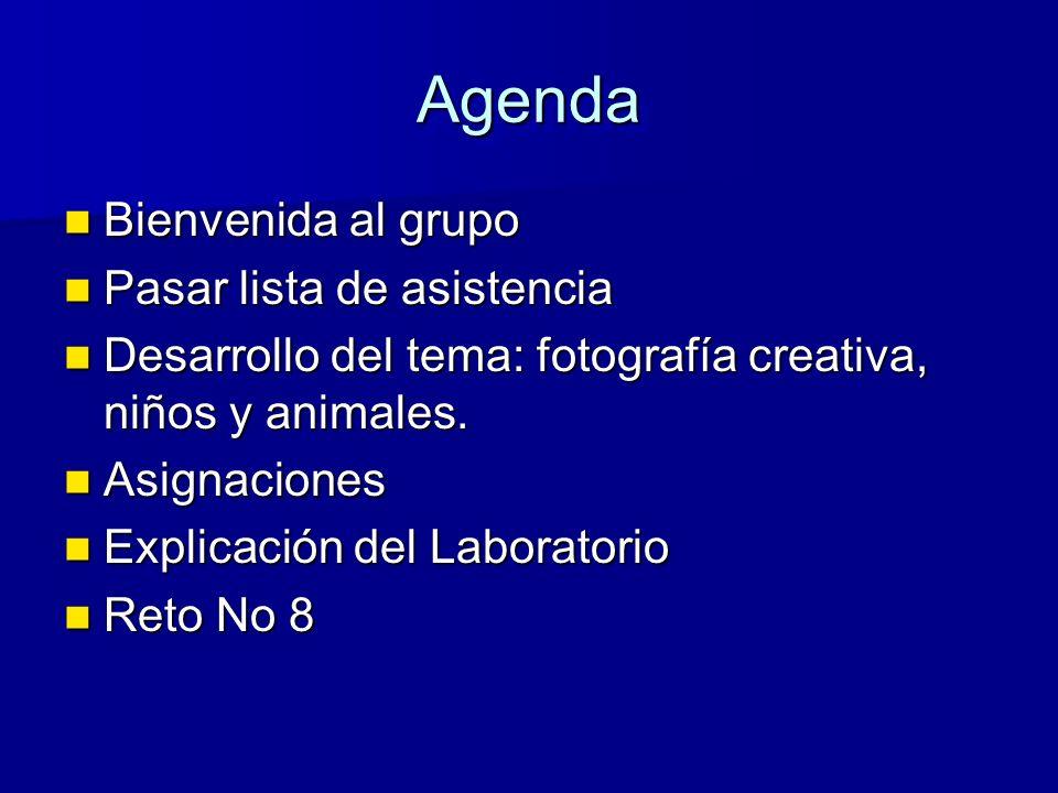 AgendaAgenda Bienvenida al grupo Bienvenida al grupo Pasar lista de asistencia Pasar lista de asistencia Desarrollo del tema: fotografía creativa, niños y animales.
