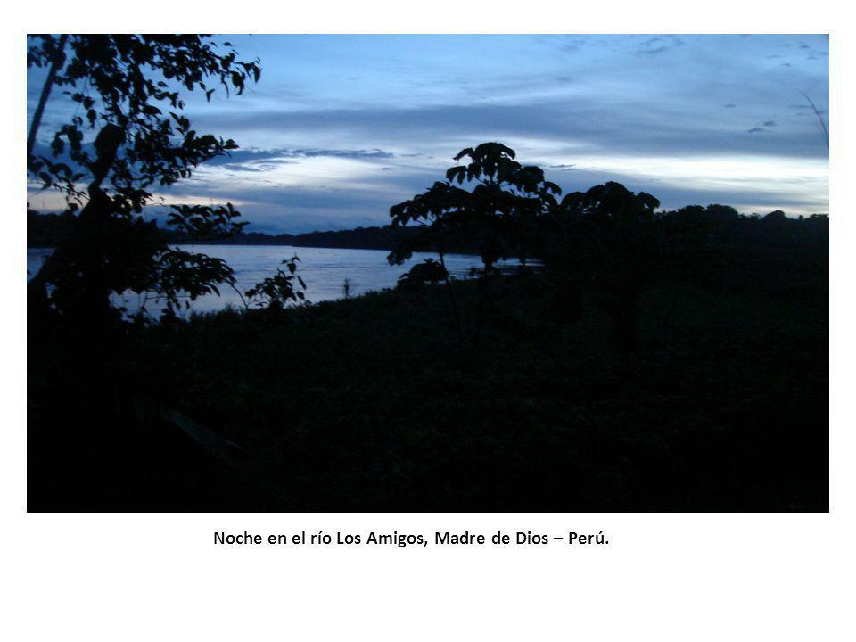 Noche en el río Los Amigos, Madre de Dios – Perú.