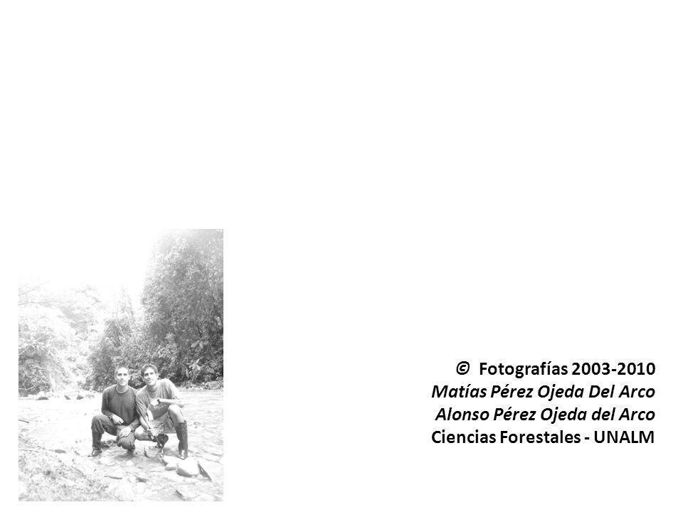 © Fotografías 2003-2010 Matías Pérez Ojeda Del Arco Alonso Pérez Ojeda del Arco Ciencias Forestales - UNALM