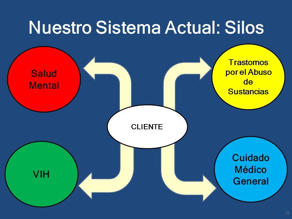 Nuestro Sistema Actual: Silos Salud Mental VIH Cuidado Médico General Trastornos por el Abuso de Sustancias CLIENTE 12