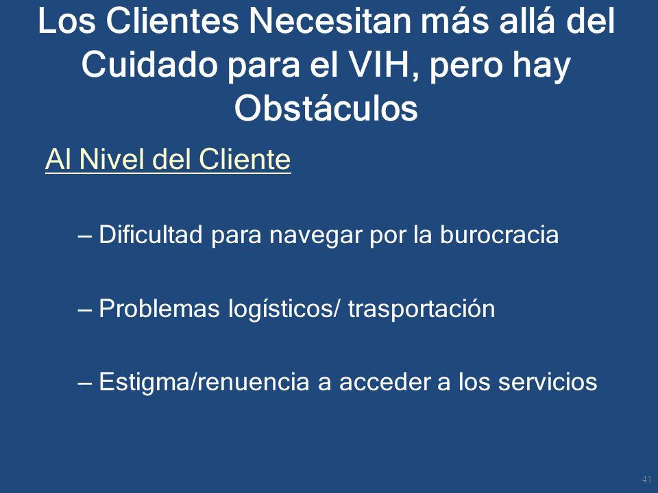 Al Nivel del Cliente – Dificultad para navegar por la burocracia – Problemas logísticos/ trasportación – Estigma/renuencia a acceder a los servicios 4