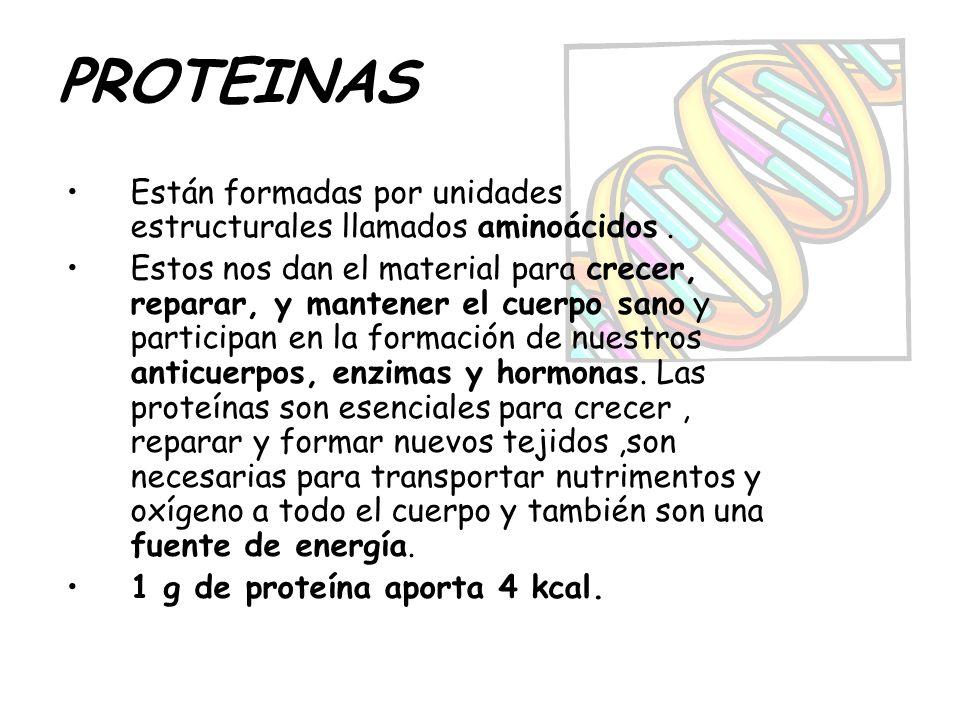 PROTEINAS Están formadas por unidades estructurales llamados aminoácidos. Estos nos dan el material para crecer, reparar, y mantener el cuerpo sano y