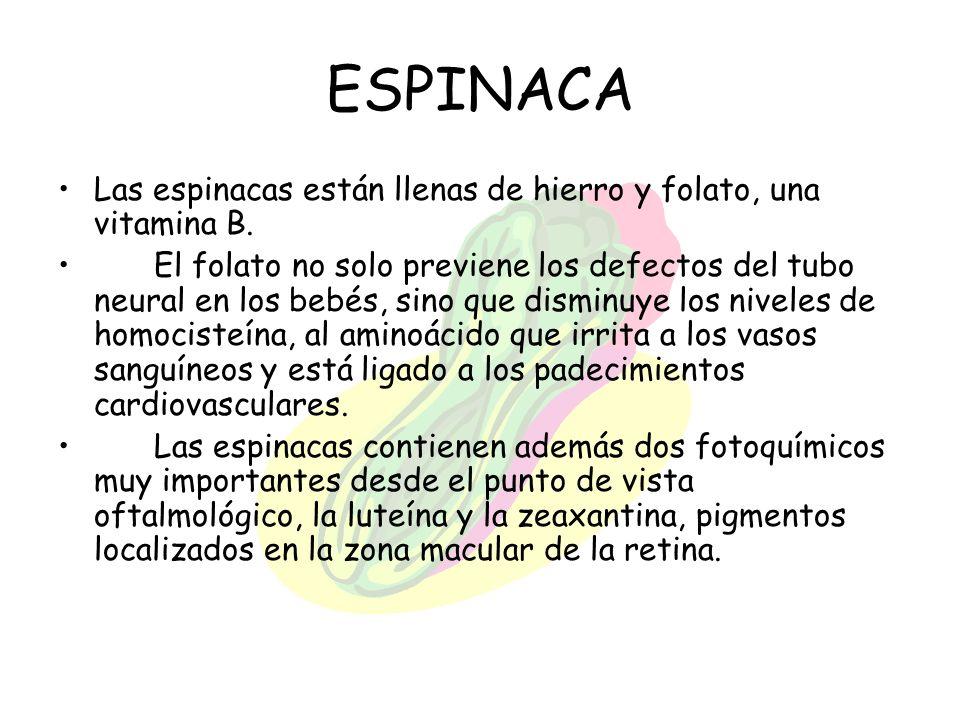 ESPINACA Las espinacas están llenas de hierro y folato, una vitamina B. El folato no solo previene los defectos del tubo neural en los bebés, sino que
