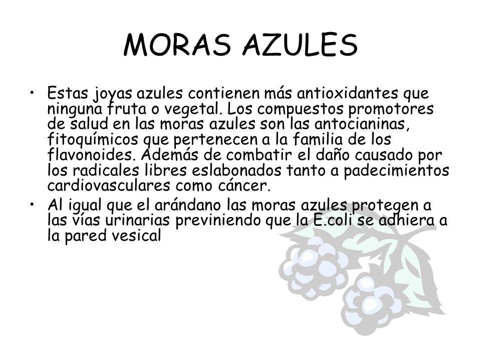 MORAS AZULES Estas joyas azules contienen más antioxidantes que ninguna fruta o vegetal. Los compuestos promotores de salud en las moras azules son la