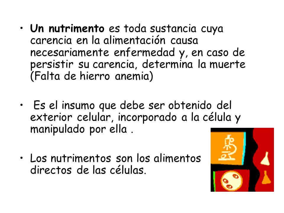Un nutrimento es toda sustancia cuya carencia en la alimentación causa necesariamente enfermedad y, en caso de persistir su carencia, determina la mue