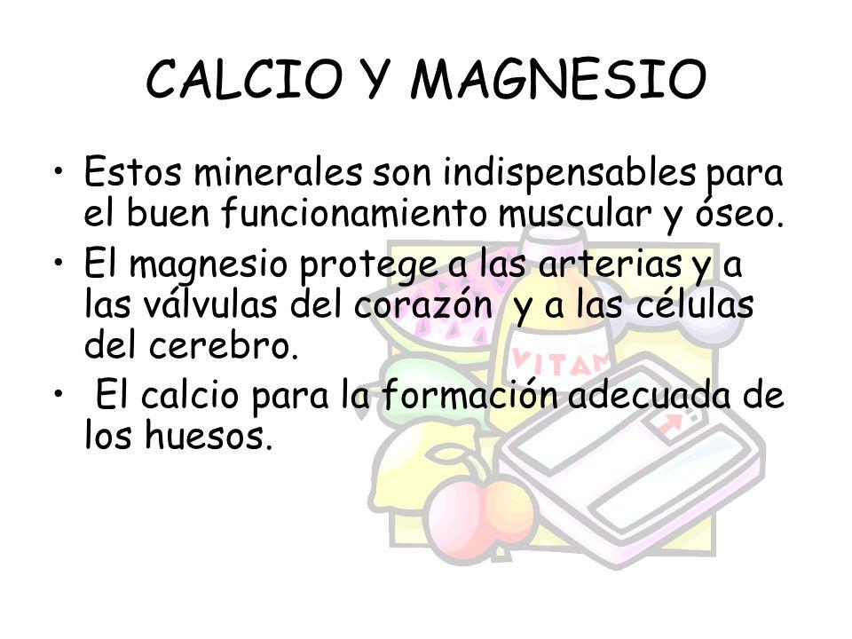 CALCIO Y MAGNESIO Estos minerales son indispensables para el buen funcionamiento muscular y óseo. El magnesio protege a las arterias y a las válvulas