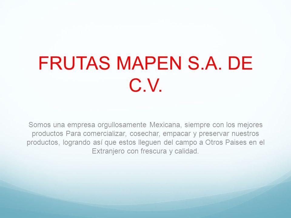 FRUTAS MAPEN S.A. DE C.V. Somos una empresa orgullosamente Mexicana, siempre con los mejores productos Para comercializar, cosechar, empacar y preserv