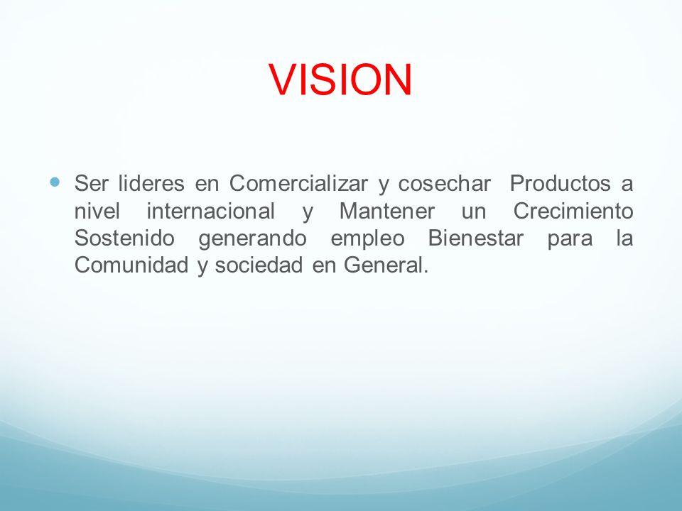 VISION Ser lideres en Comercializar y cosechar Productos a nivel internacional y Mantener un Crecimiento Sostenido generando empleo Bienestar para la