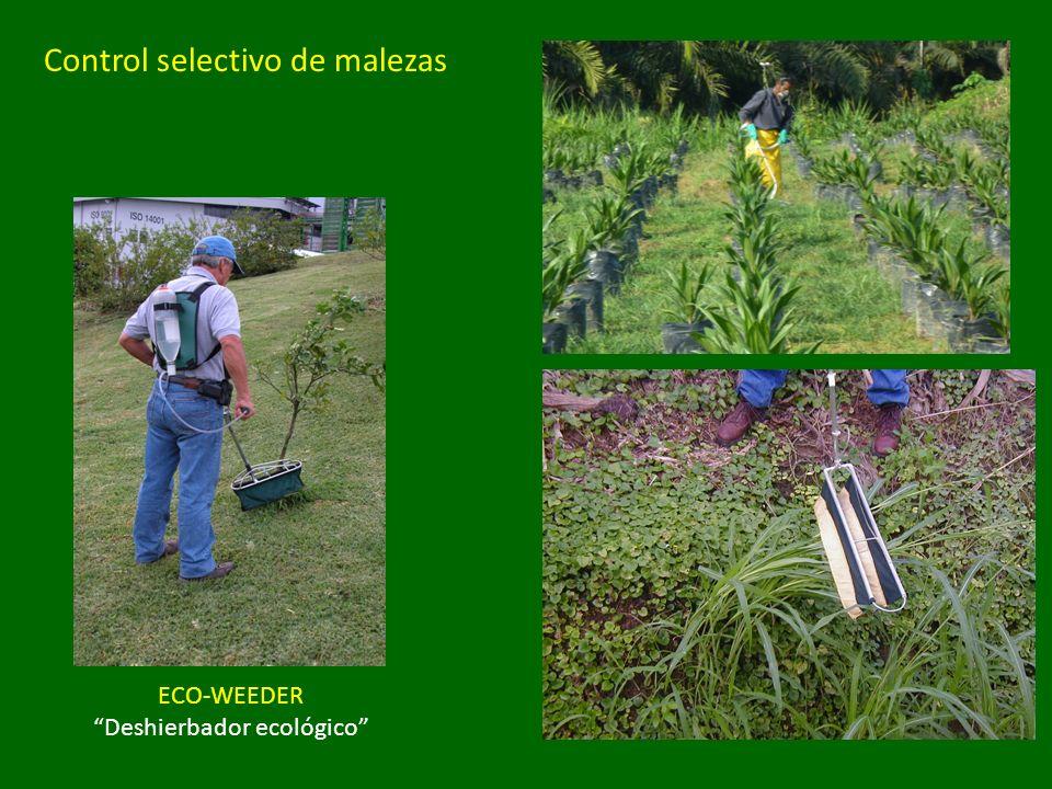 ECO-WEEDER Deshierbador ecológico Control selectivo de malezas