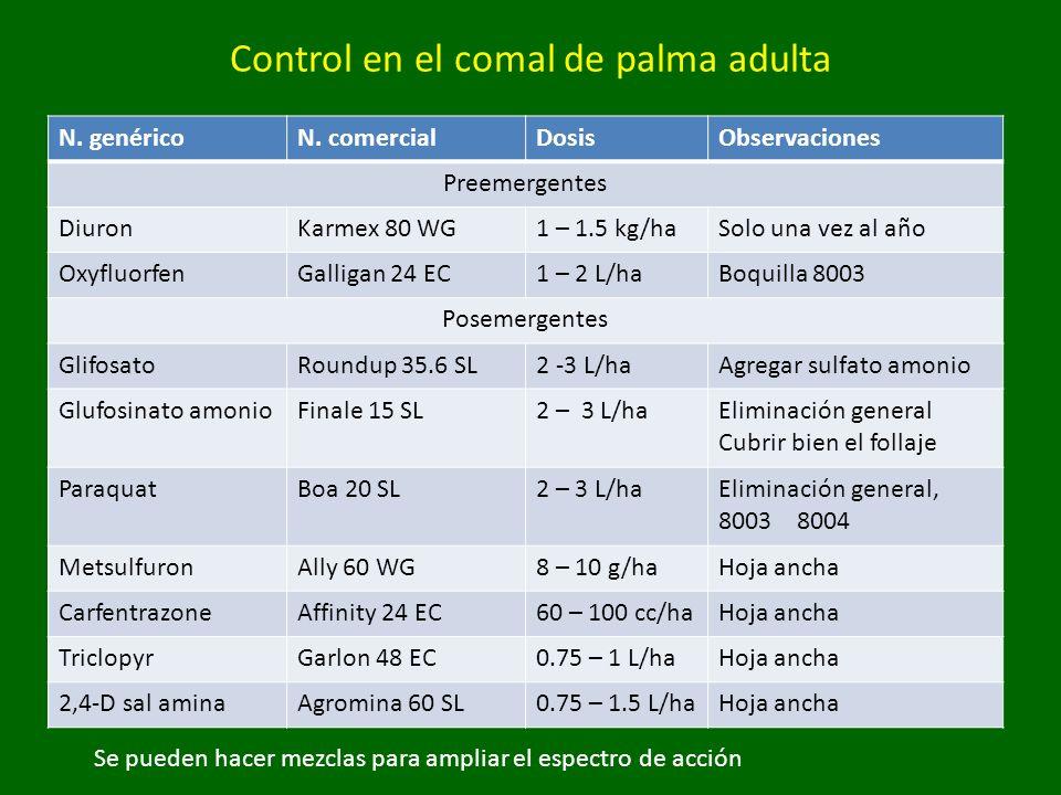 Control en el comal de palma adulta N. genéricoN. comercialDosisObservaciones Preemergentes DiuronKarmex 80 WG1 – 1.5 kg/haSolo una vez al año Oxyfluo