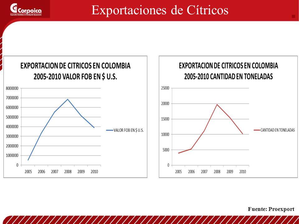 Exportaciones de Cítricos Fuente: Proexport