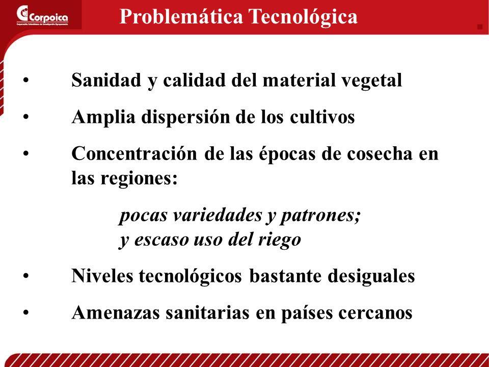 Problemática Tecnológica Sanidad y calidad del material vegetal Amplia dispersión de los cultivos Concentración de las épocas de cosecha en las region