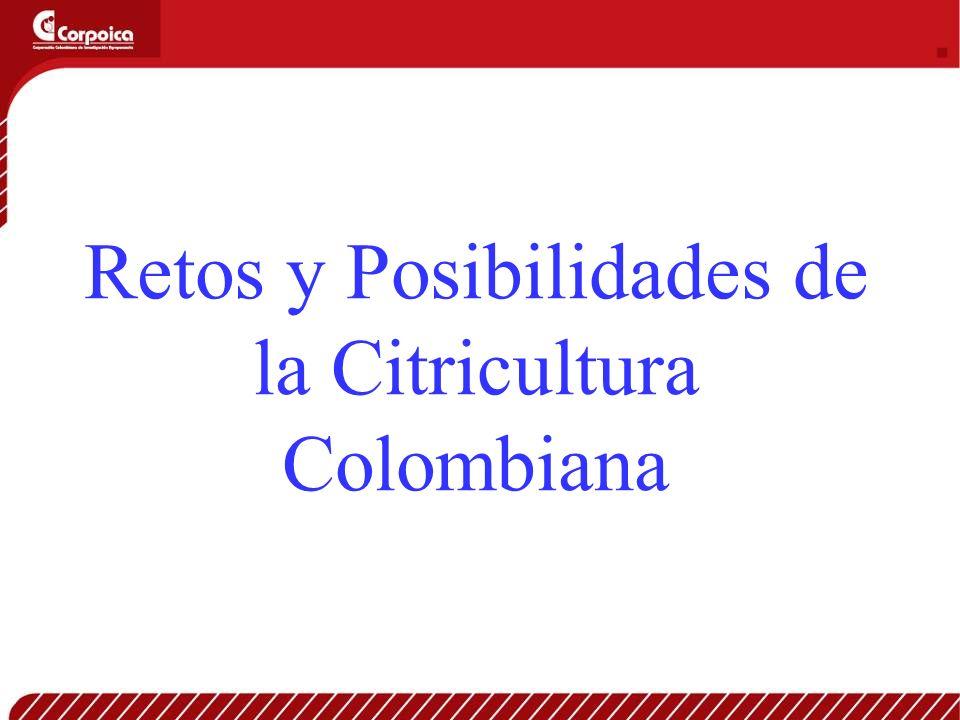 Retos y Posibilidades de la Citricultura Colombiana