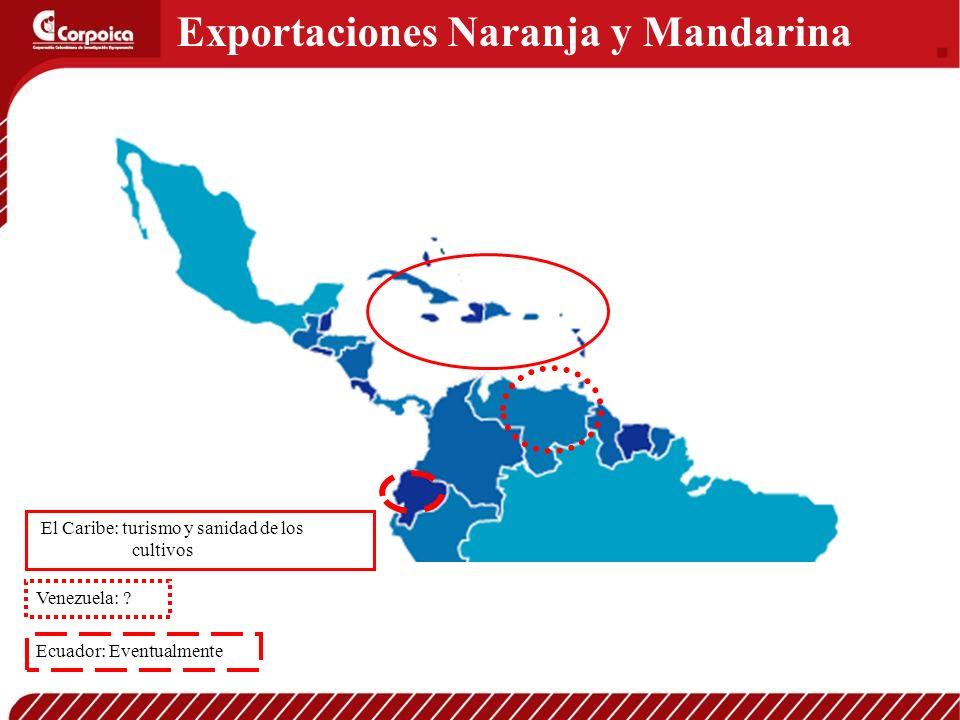 Exportaciones Naranja y Mandarina El Caribe: turismo y sanidad de los cultivos Venezuela: ? Ecuador: Eventualmente